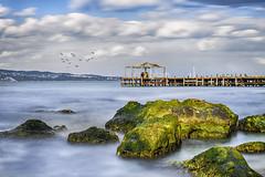 """Romance"" (ИвайлоВеликов) Tags: sky sea beauty birds water beach travel blue clouds rocks summer green seascape long exposure romance flying"