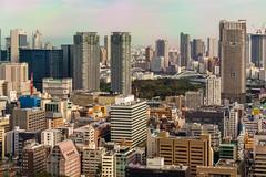 IMG_2619 (Evgeny Gorodetskiy) Tags: birdseye autumn city overlook skyscrapper tokyo japan travel minatoku tōkyōto япония jp