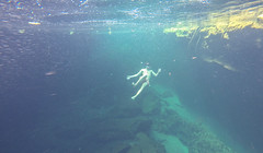 Tulum Casa Cenote friends-2