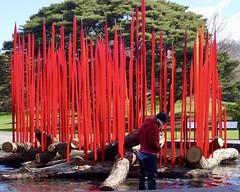 High Anxiety (Anne Marie Clarke) Tags: fountain glass chihuly red anxiety danger newyorkbotanicalgarden handblownglass outdoorart art sculpture installation