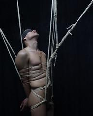 a- wire (shibarigarraf) Tags: shibari bondage shibarigarraf male rope hair bound