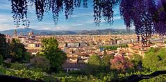 a romantic notion (cherryspicks (on/off)) Tags: florence italy city panorama garden bardini view