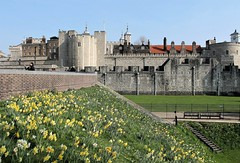 Tower of London (Esther Spektor - Thanks for 12+millions views..) Tags: greatbritain london tower castle architecture buildings wall spring bllom flowers lawn historic roof travel estherspektor canon