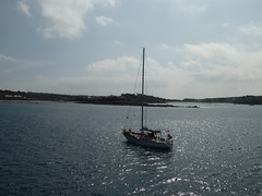 18 April 2017 Scilly (12) (togetherthroughlife) Tags: 2017 april scilly islesofscilly