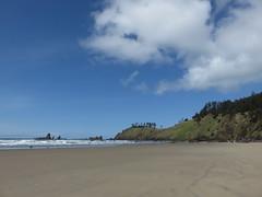 post winter salve (carolyn_in_oregon) Tags: crescentbeach cannonbeach pacificocean ecolastatepark coast