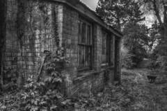 The Old Potting Shed (nigdawphotography) Tags: pottingshed garden gardening benington benintonlordship herts hertfordshire