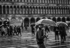 Rain on San Marco, Venice (alberto_galan) Tags: blackdiamond veneto venice venezia italy rainy travel walking blackandwhite bw rain panning nikon nikonclubit nikonphotography nikonitalia nikoneurope nikonphotographer photographer photography emotions monochrome people