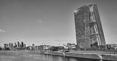 Frankfurt (rainerneumann831) Tags: frankfurt ezb hochhaus main flus blackwhite architektur gebäude skyline