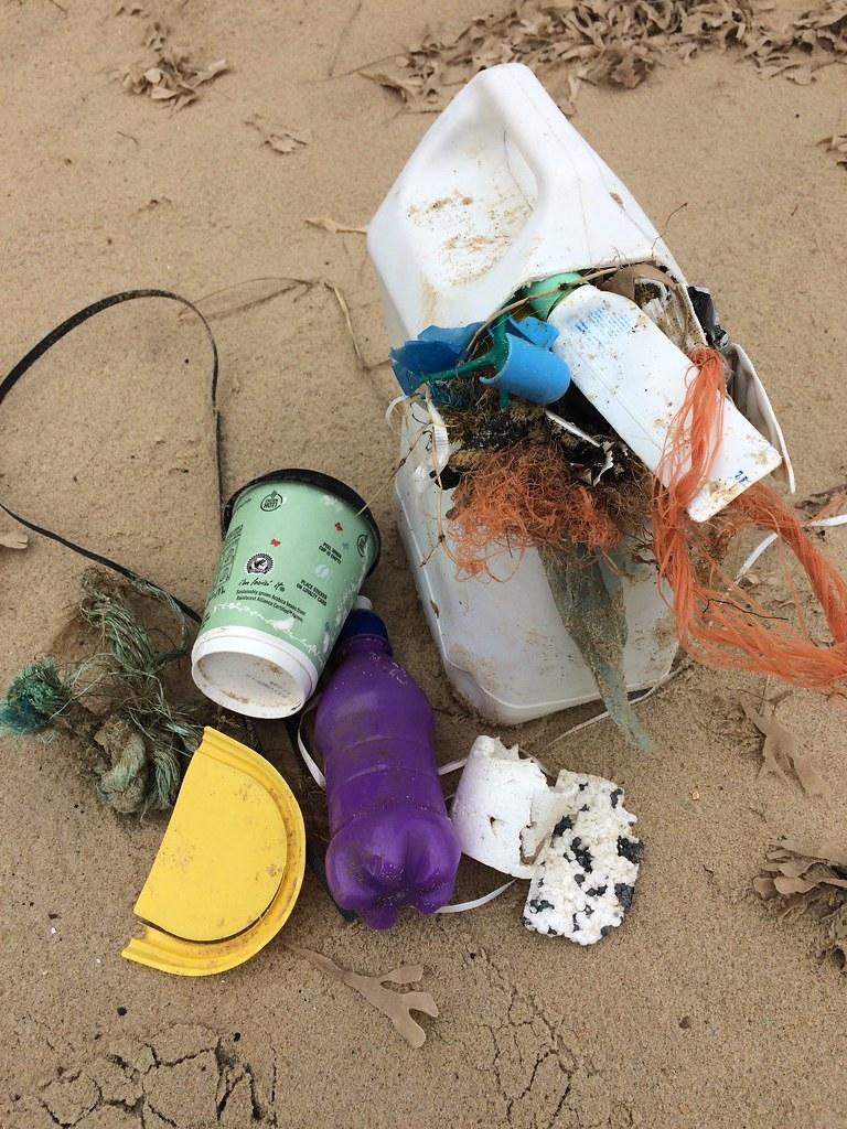 Horsey Beach Clean Finds