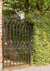hiding mailbox (doddsjzi) Tags: overgrown wall mailbox photo vines gate hidden charlestonsc concealed irongate overgrownmailbox ornamentalirongate hiddenmailbox concealedmailbox