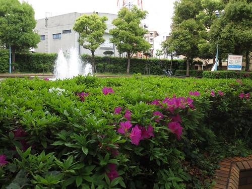 噴水のある公園