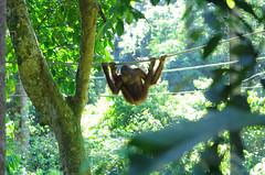 hanging around2
