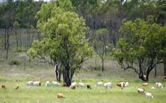 Flinders Highway, Pentland QLD