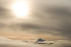Big Rock Winter 2014 (ecov ottos) Tags: marincounty bigrockopenspace