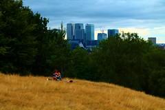 Greenwich Park - 2 (edlion259) Tags: blue england sky green london love yellow greenwich lovers wharf canary