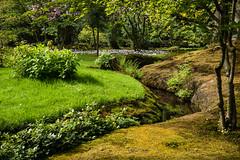 Japanse Tuin Clingendael 2014-02259 (Arie van Tilborg) Tags: japanesegarden denhaag thehague clingendael japansetuin clingendaelestate landgoedclingendael