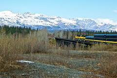 USA - Alaska (Herculeus.) Tags: snow ice bridges ak trains cabins trestles alaskarr 5photosaday alaskanrange denalinp talkeetnatodenali