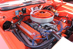 IMG_0416 (RyanP77) Tags: ford nova car 1 rat muscle ss chevelle chevy rod pontiac gto hemi mopar mustang corvette barracuda rt charger aar mach srt cude challengar