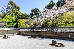 ~ Ryoan-ji l ~ (Serge Dai) Tags: trees japan garden temple spring kyoto rocks buddhist bluesky unesco worldheritagesite zen handheld sakura ryoanji nikkor1802000mmf3556 templeofthedragonatpeace sergedaigneault
