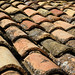 roof tiles in colour I