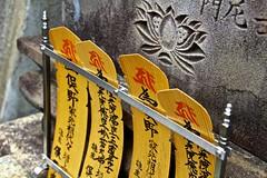 Kyoto, Japan (donotmisslist) Tags: travel beauty amazing adventure explore journey exploration nationalgeographic discover discoverychannel worldtravel lifejourney triparoundtheworld wwwdonotmisslistcom