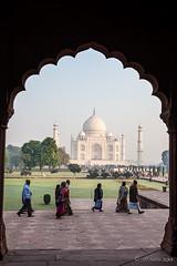 Scalloped View 7899 (Ursula in Aus) Tags: india architecture arch tajmahal arches unesco archi earthasia