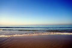 Coronado Island (K e v i n) Tags: ocean california ca beach water swim outside sand waves pacificocean dolphins coronado dogbeach sandiegocounty coronadoisland