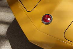 Golden Stingray (Eric Arnold Photography) Tags: auto classic chevrolet car gold ray stingray sting flags chevy badge vehicle corvette vette