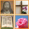 Herr Jesu, deiner Glieder Ruhm (amras_de) Tags: jesus isa jesús jesuschrist jezus isus gesù jesuschristus ježíškristus jeesus iesus jézus jesuschristo jesuskristus jezuschrystus gesùcristu jesúsdenazaret jésusdenazareth jezuskristus jesusnazaretekoa jesuokristo chesúsdenazaret jesúsdenatzaret íosacríost jesusvannasaret jesusvunnazaret jèsus isusdinnazaret ježiškristus