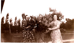 "l-to-r Lucy Campbell (Ruths mom) Alice Haun and lilacs - Lomabard, IL - 1951 • <a style=""font-size:0.8em;"" href=""http://www.flickr.com/photos/42153737@N06/14387842729/"" target=""_blank"">View on Flickr</a>"