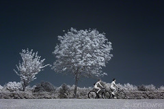 cycling in the park (Jon Downs) Tags: park blue trees red people woman white man tree monochrome bicycle canon downs ir mono jon couple cycle infrared milton keynes campbell infra ers 400d jondowns