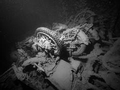 Motorcycle Remains (altsaint) Tags: underwater redsea egypt panasonic shipwreck motorcycle bsa thistlegorm gf1 blueseas