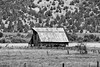 Old barn (JiminSC) Tags: old blackandwhite bw west barn canon western canon5d oldbarn tinroofrusted