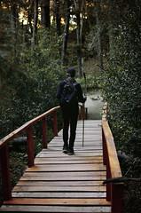 *Journey With Him* (zombie brain for tea) Tags: travel viaje bridge forest puente woods adventure journey bosque viajar aventura