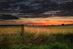 Harmstorf sunset (PhotoArt Hartmann) Tags: sunset sky cloud fence sonnenuntergang jan feld wiese himmel wolken zaun hartmann photoart lneburg dahlenburg