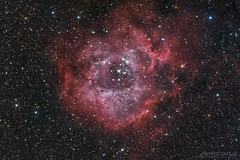 Rosette Nebula (Astro-Tanja) Tags: space astro nebula astrophotography astronomy rosette dso nebulosity astrotanja astrotanjadotcom