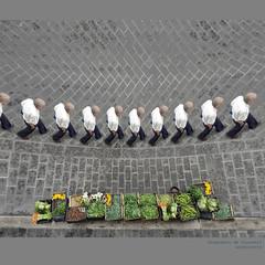 passage of time  -explore- (archifra -francesco de vincenzi-) Tags: street italy man italia time uomo passageoftime tictac hombre homme verdure molise isernia ortaggi archifraisernia francescodevincenzi