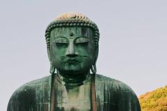 Meditating (lorenzoviolone) Tags: trip travel monument statue japan bronze japanese reflex nikon raw fav50 buddha kamakura landmark journey dslr bigbuddha kodakportra800 fav10 fav25 fav100 vsco afsdxvrzoomnikkor1855mmf3556g d3100 nikond3100 vscofilm