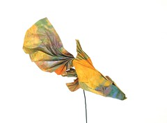 Guppy (folding~well) Tags: fish paper origami guppy folding