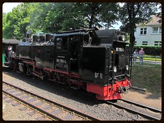 RBB 99 1782-4 (v8dub) Tags: allemagne deutschland germany rgen binz gare bahnhof stoom steam stoomloc station railroad railway train trein zug lokomotive locomotive loco locomotivevapeur dampflok dampf dampfzug bahn eisenbahn schmalspurbahn rasender roland rbb rkb