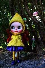 HUNTING FOR FAERIES IN THE GARDEN