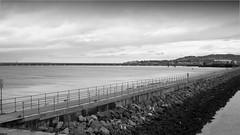 Dun Laoghaire (Wendy:) Tags: fence 350d mono harbour kitlens dunlaoghaire