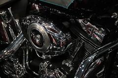 Harley-Davidson Fat Boy (dirk..) Tags: harleydavidson flstf fat boy vtwin motorcycle one best selling models produced harley davidson designed willie g louie netz prototype was daytona bike week rally beach 1989 unusual solidcast disc wheels utrecht jaarbeurs holland nederland oldtimer motor