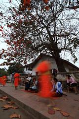 """Luang-Prabang_M_060 (ppana) Tags: """"laos"""" """"vientiane"""" """"pha that luang"""" """"luang prabang"""" """"savannakhet"""" """"pakxe"""" """"xiengkhouang"""" """"plain jars"""" """"mekong river"""" """"kuangsi water fall"""" """"pak ou caves"""" """"mount phousi"""" """"haw pha bang"""" """"wat chomsi"""" chom phet"""" xieng thong"""" mai suwannaphumaham"""" """"vang vieng"""" """"tham phou kham cave"""" """"nam song"""" si saket"""" phra kaew"""""""