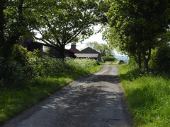 Live in the present moment (Lancashire Lass :) :) :)) Tags: lane hothersalllane ribblevalley lancashire countryside farm shadow sunshine trees hedgerow may spring quote