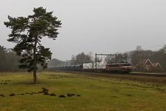 Captrain 1619 met glas en graanwagens, Oldenzaal (Dennis te D) Tags: zandsteenweg oldenzaal captrain 1619 glas rongenwagens graanwagens vtg
