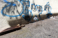 2017.SPG.ARCH 390-790 (Bouchard)_UEA_DW No.01 (Urban Vacancy)_J.Huth, J.Rodriguez & M.Winder_Model_19 (Nikole Bouchard) Tags: milwaukee wisconsin architecture urbandesign uwm universityofwisconsinmilwaukee 30thstreetindustrialcorridor art workshop charrette waste community
