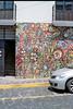 Flower wall (AndreiSaade) Tags: minolta himatic7s minoltahimatic7s himatic kodak proimage 100 streetphotography rangefinder 35mm 35mmfilm keepfilmalive istillshootfilm méxico xalapa film
