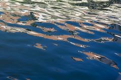 Venezia , la luguna astratta ... (miriam ulivi - OFF/ON) Tags: miriamulivi nikond7200 italia venezia venice laguna riflessi colori acqua onde lagoon reflections colors water waves abstract art