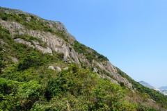DSC_8500 (sch0705) Tags: hk hiking kowloonpeak standingeagleridge
